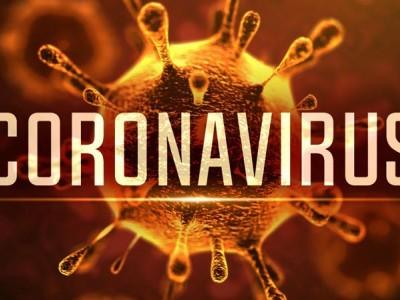 コロナウイルス(COVID-19)について知っておくべきことは何ですか?アブサンはこのウイルスを倒すのを助けることができますか?